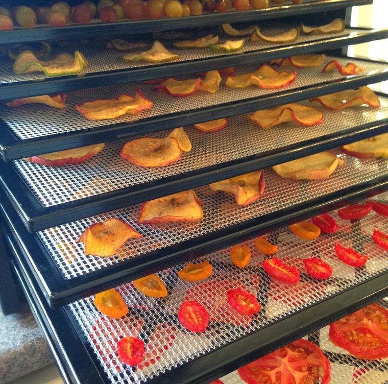 dehydrator-display-trays
